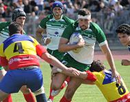 apuestas en rugby
