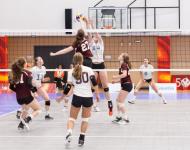 apuestas en voleibol